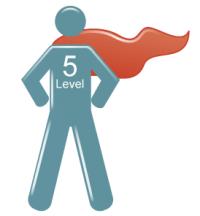 5 leadership level pdf