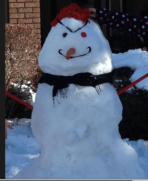 Namanny Snowman