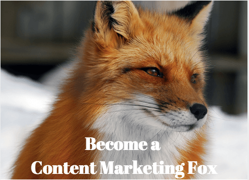 Content Marketing Fox