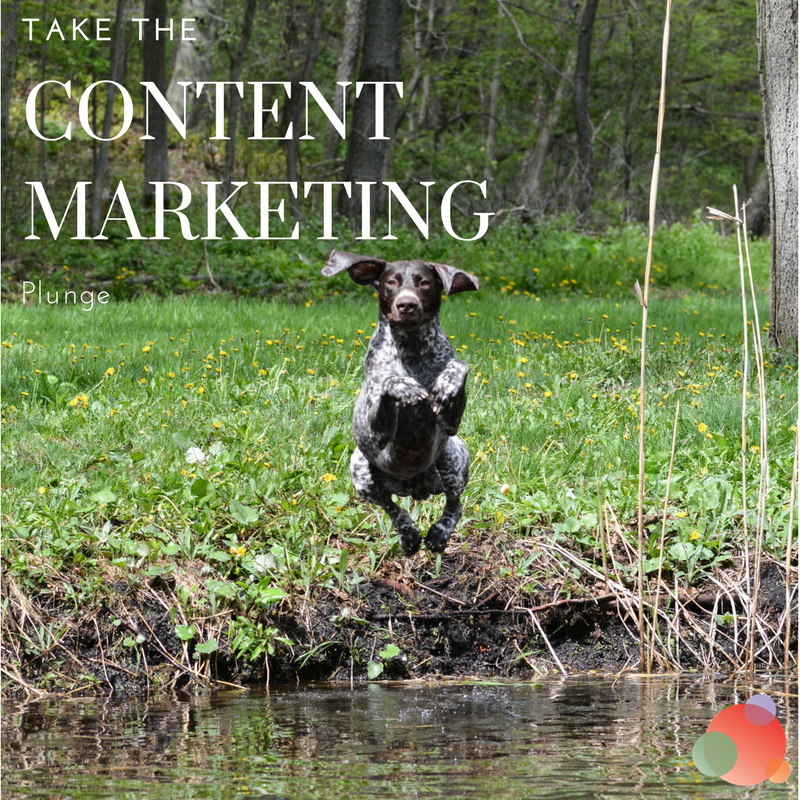 Take the Content Marketing Plunge