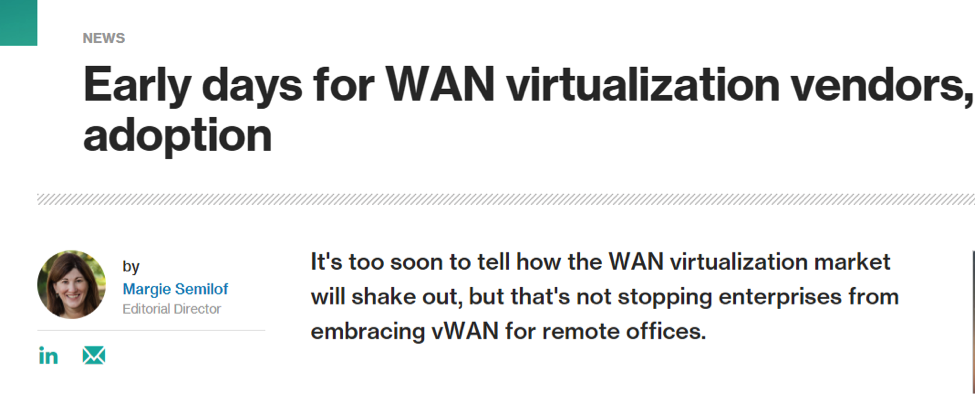 WAN virtualization vendors