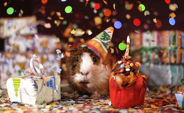 Happy Birthday, Spin Sucks!