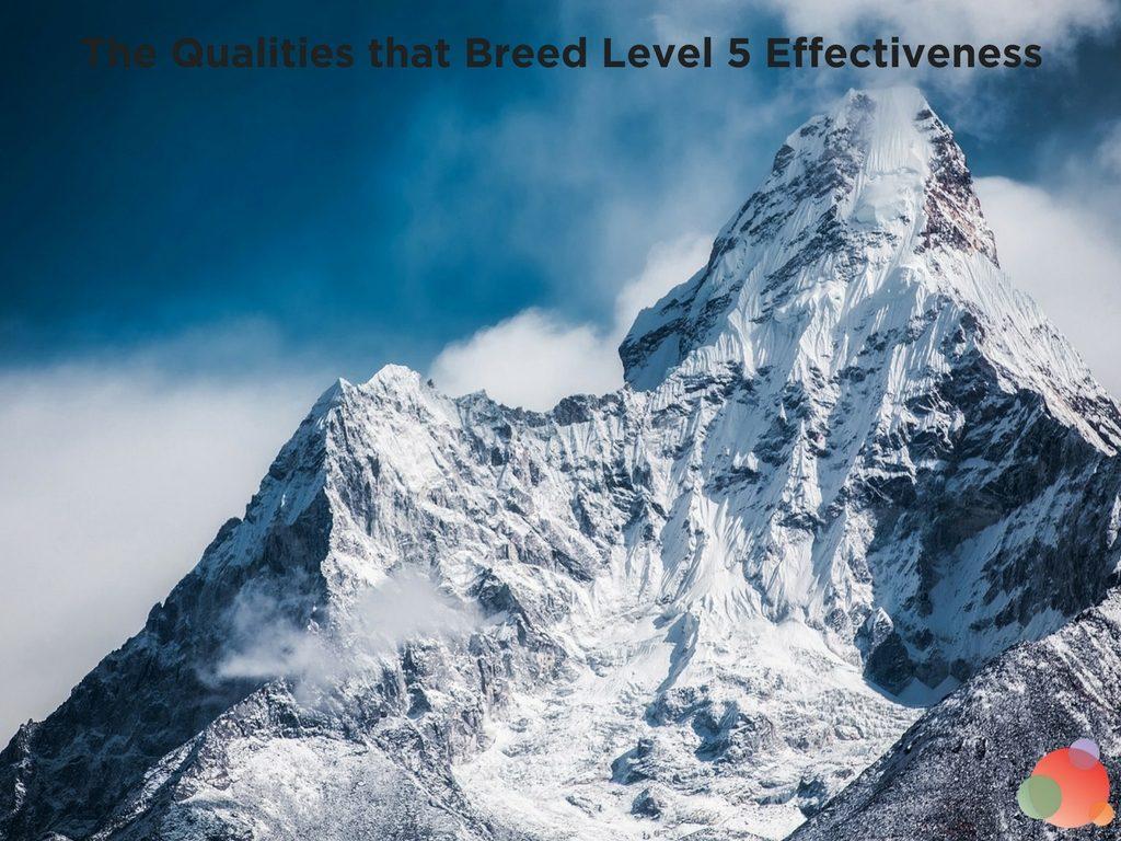 Level 5 CEO