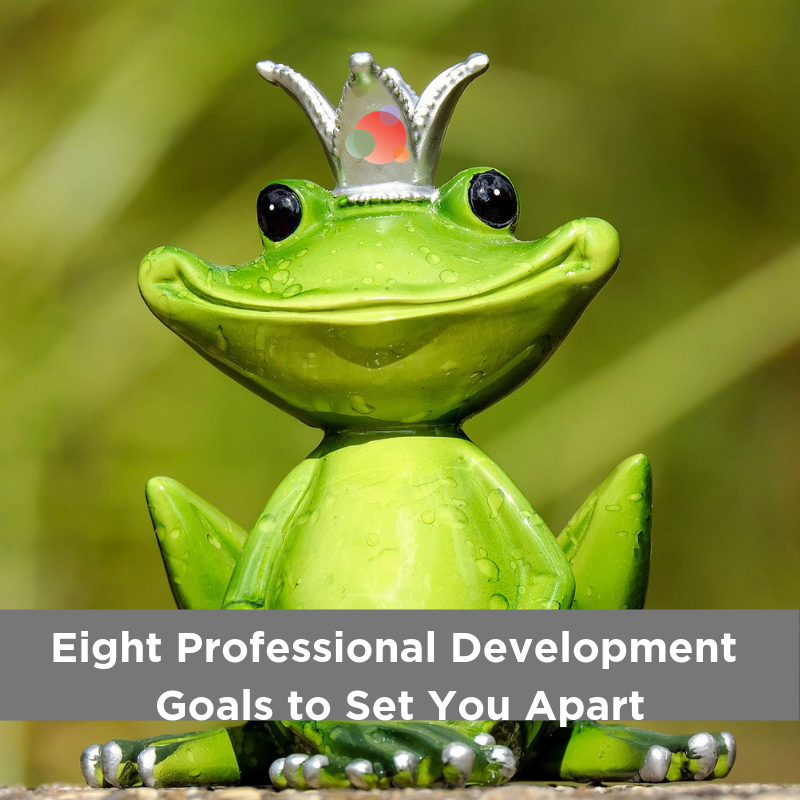 Eight Professional Development Goals to Set You Apart