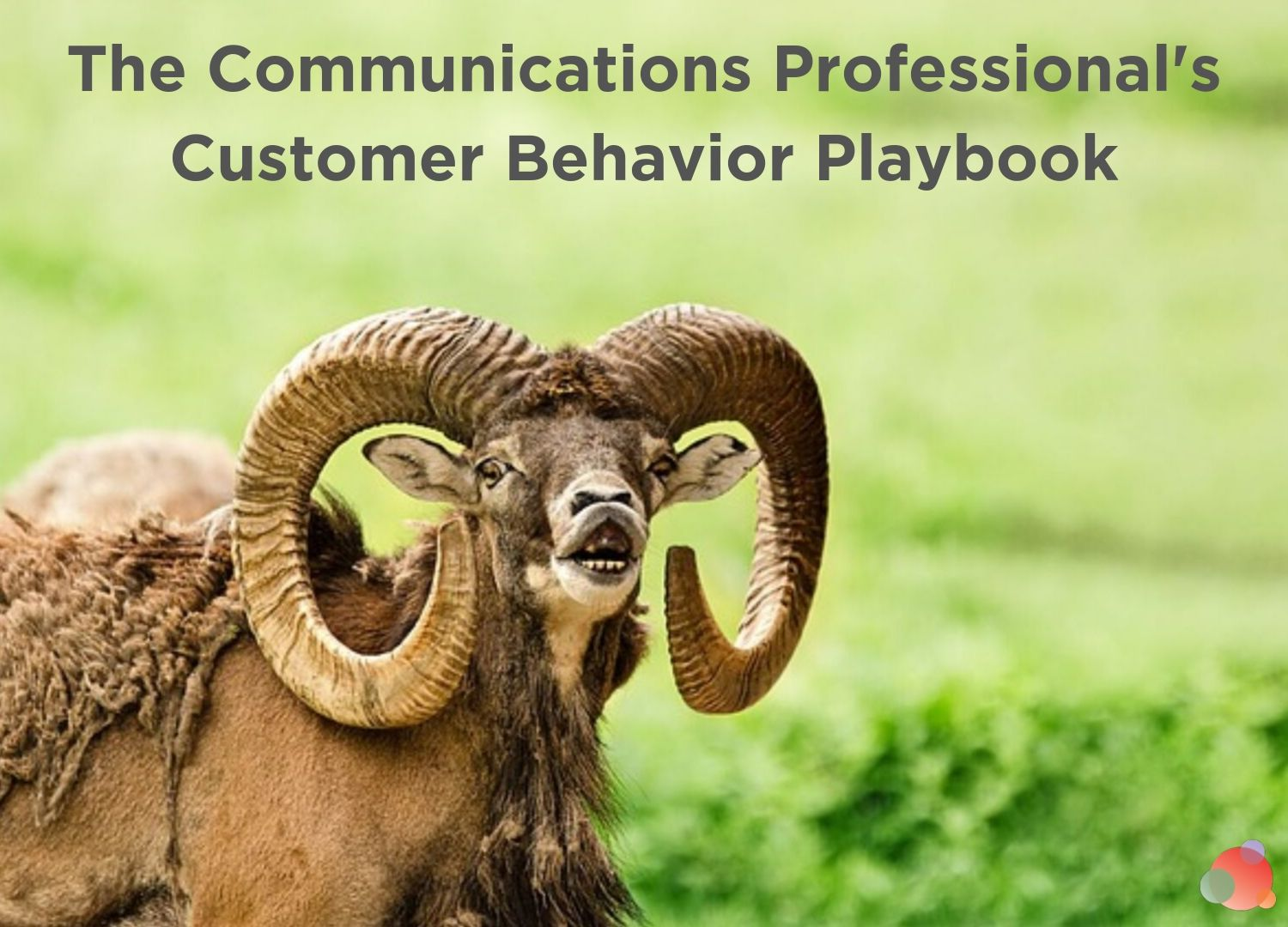 The Communications Professional's Customer Behavior Playbook