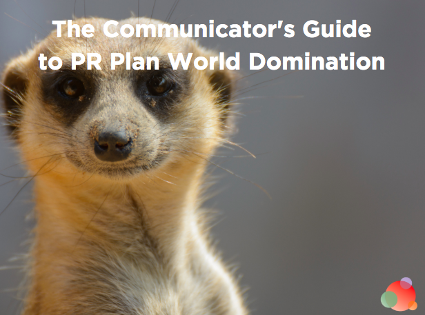 The Professional's Guide to a Successful Communications Plan