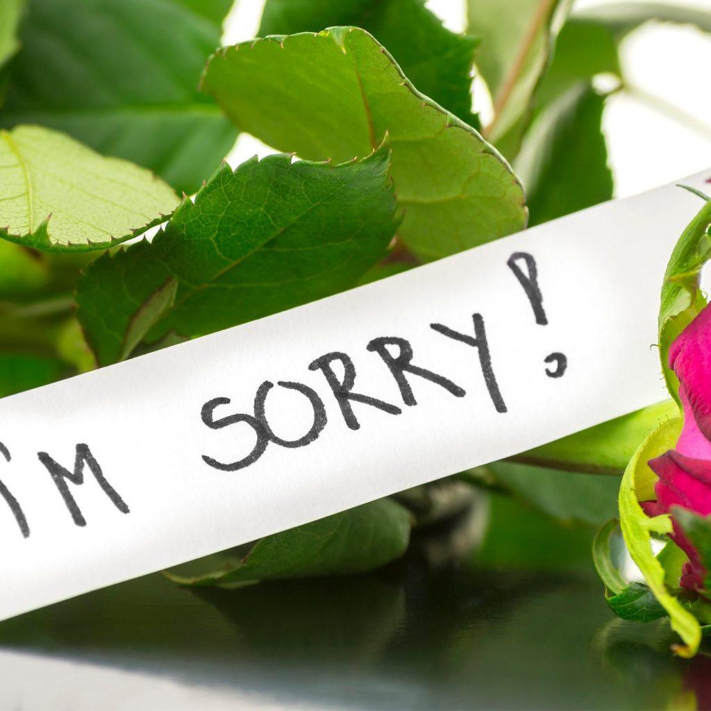 Mea Culpa: I'm Sorry