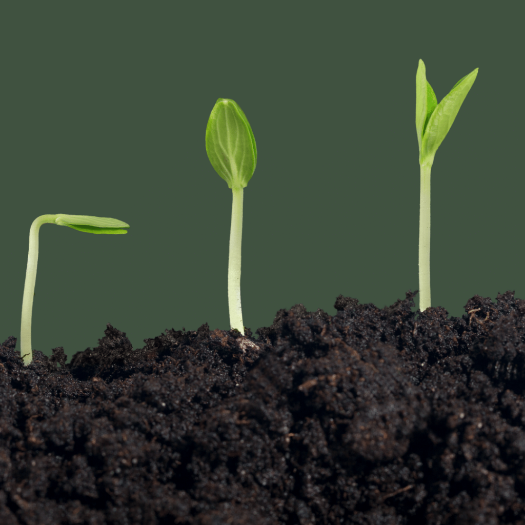 Five Distinct Rules to Grow Your PR Agency